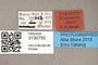 3130750 Bercaeopsis seagoi PT labels IN