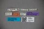 3048635 Oxytelus ruandae ST labels IN