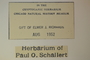 U.S.A. (North Carolina), P. O. Schallert 4604 (Accession number: none)