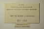 U.S.A. (Wisconsin), W. L. Culberson 1493 (Accession number: none)