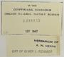 U.S.A. (California), L. Bonar s.n. (Accession number: 1234145)