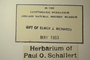 U.S.A. (North Carolina), P. O. Schallert s.n. (Accession number: none)