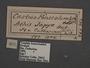 Yagra fonscolombe C labels