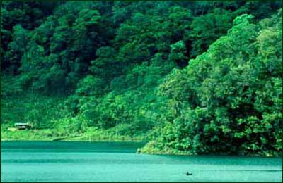 Mountainous slopes were all draped in forest when people first arrived in the Philippines from the Asian mainland. Canoes were the primary means of transportation for hundreds and perhaps thousands of years. [Copyright] Field Museum of Natural History - CC BY-NC