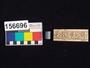 156696 semi-precious stone seal, cylinder