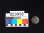 228058 stone, possible spindle whorl