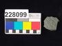 228099 stone sherd, rim fragment