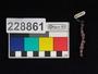 228861 semi-precious stone beads