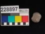 228897 semi-precious stone bead