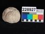 228927 stone tool