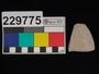 229775 stone sherd, rim