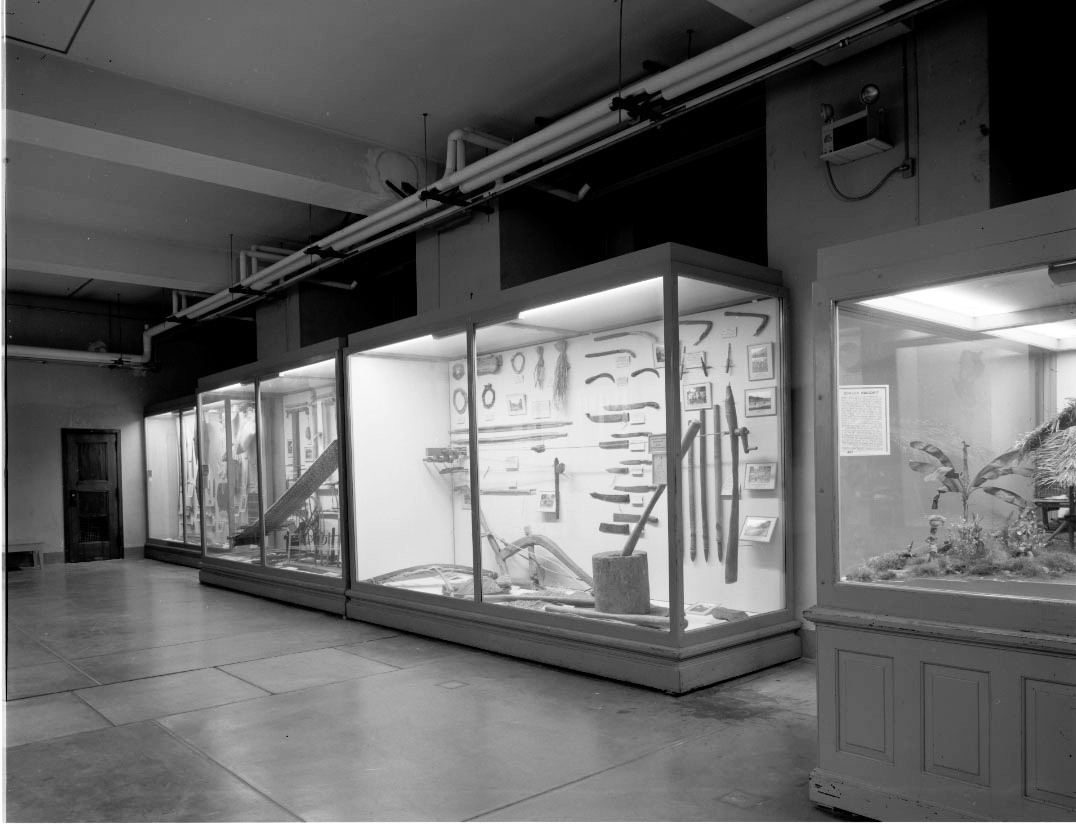 Hall A Philippines overall view documentary record of exhibit cases and dioramas before deinstallation. [Copyright] Field Museum of Natural History - CC BY-NC