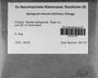 Sphagnum fuscum (Schimp.) H. Klinggr., FINLAND, E. C. Nyholm 841/72