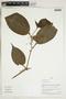 Herbarium Sheet V0324277F