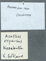 Label for University of Chicago Ordovician Trilobite specimen PE_89138, Asaphus expansusfrom Trenton, Sweden