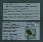 PE 60824 label