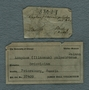 UC 37409 label