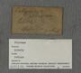 UC 56803 label