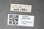 3035768 Stagmomantis carolina label