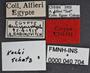 Clivina kochi PT labels