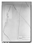 Field Museum photo negatives collection; Paris specimen of Polygala chuiti Chodat, Paraguay, B. Balansa 2182, Type [status unknown], P