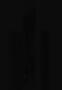 Tachycnemis 213700 CT Raw Data