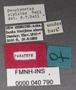 Omoglymmius stylatus PT labels
