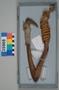 35968 wood fishhook