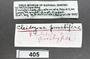 405 Cleidogona, label
