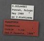 Thopeutica toraja PT labels