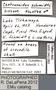 FMNHINS43093 Centruroides schmidti HT labels