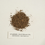 funded by Rob Gordon: Caulophyllum thalictroides Regel, Blue Cohosh, U.S.A., F