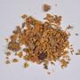 funded by Rob Gordon: Euphorbia resinifera O. Berg, Euphorbium, Morocco, 3, F