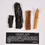 Anacardium occidentale L., Cashew Gum, JAMAICA, F