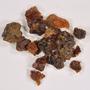 Boswellia thurifera Roxb. ex Fleming, Gum, INDIA, F