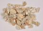 Protium Burm. f., Brazilian Elemi, BRAZIL, 40, F