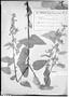 Field Museum photo negatives collection; Genève specimen of Sida melanocaulon Hassl., PARAGUAY, É. Hassler 10294, Type [status unknown], G