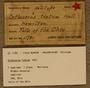 UC 11781 Label