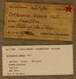 UC 11783 Label