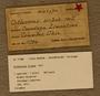 UC 11786 Label