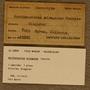 UC 23805 Label