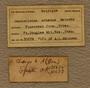 UC 35672 Label