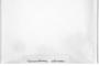 Solenostoma rubrum image
