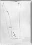 Field Museum photo negatives collection; Genève specimen of Polygala pseudosericea Chodat, PARAGUAY, B. Balansa 471d7, Type [status unknown], G