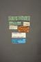 63481 Espeson titschacki ST labels IN