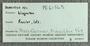 IMLS Silurian Reef Digitization Project, Image of label for a Silurian  trilobite, specimen PE 61565