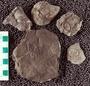 IMLS Silurian Reef Digitization Project, Image of a Silurian  trilobite, specimen UC 24312