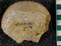 IMLS Silurian Reef Digitization Project, Image of Silurian  trilobite, specimen UC 21728