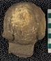IMLS Silurian Reef Digitization Project, Image of Silurian  trilobite, specimen UC 60658