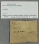 IMLS Silurian Reef Digitization Project, Image of a Silurian trilobite label, specimen UC 59603